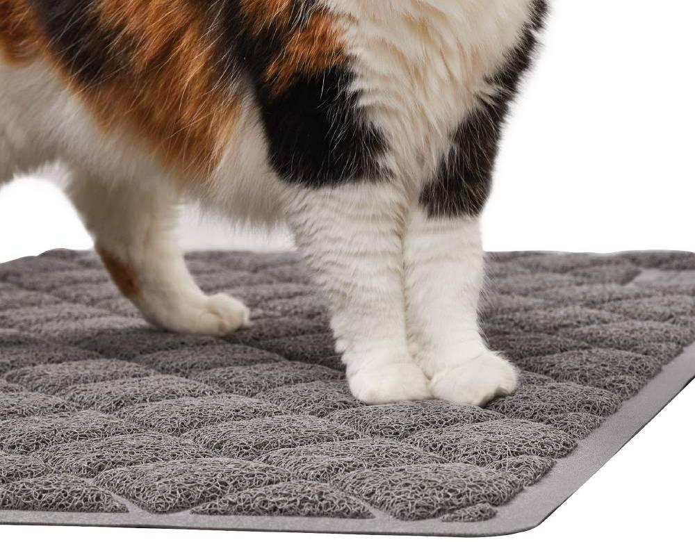 Mejores alfombras para gatos