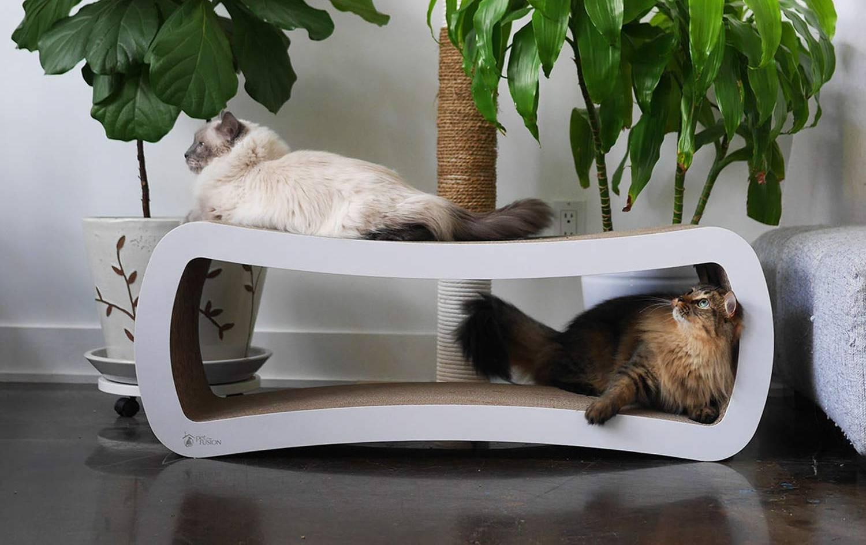 Rascadores de cartón para gatos: los mejores [year] (guía) 1