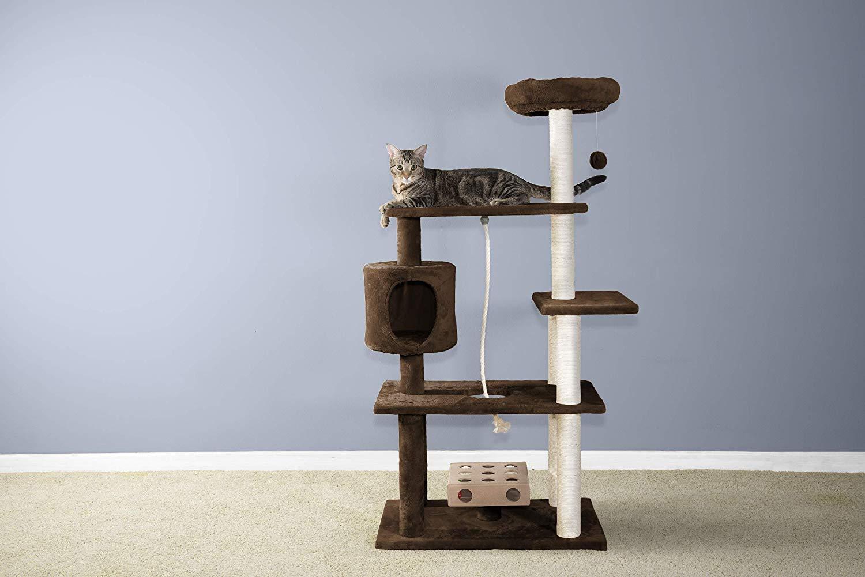 Mejores árboles para gatos - guía