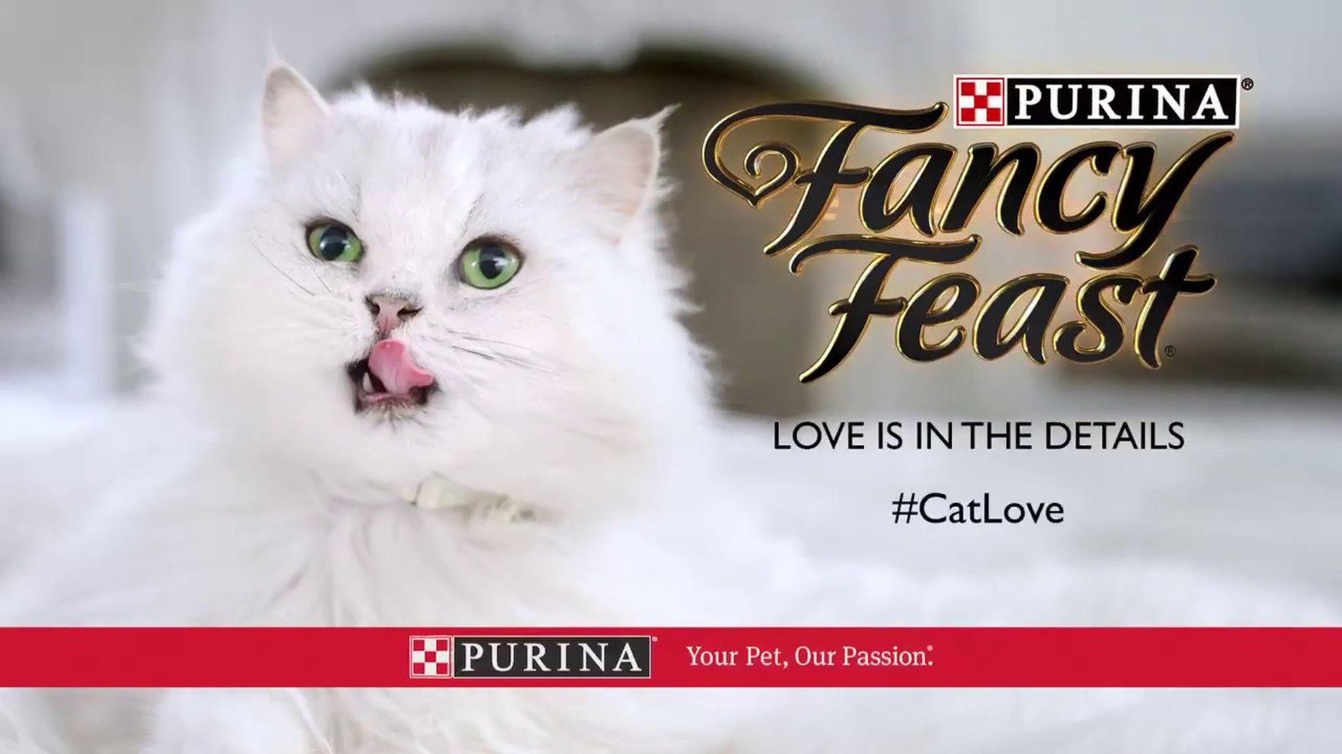 Revisión de la comida para gatos Fancy Feast 1
