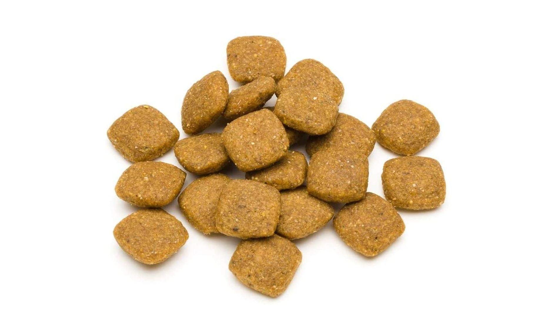 ablandar la comida para perros