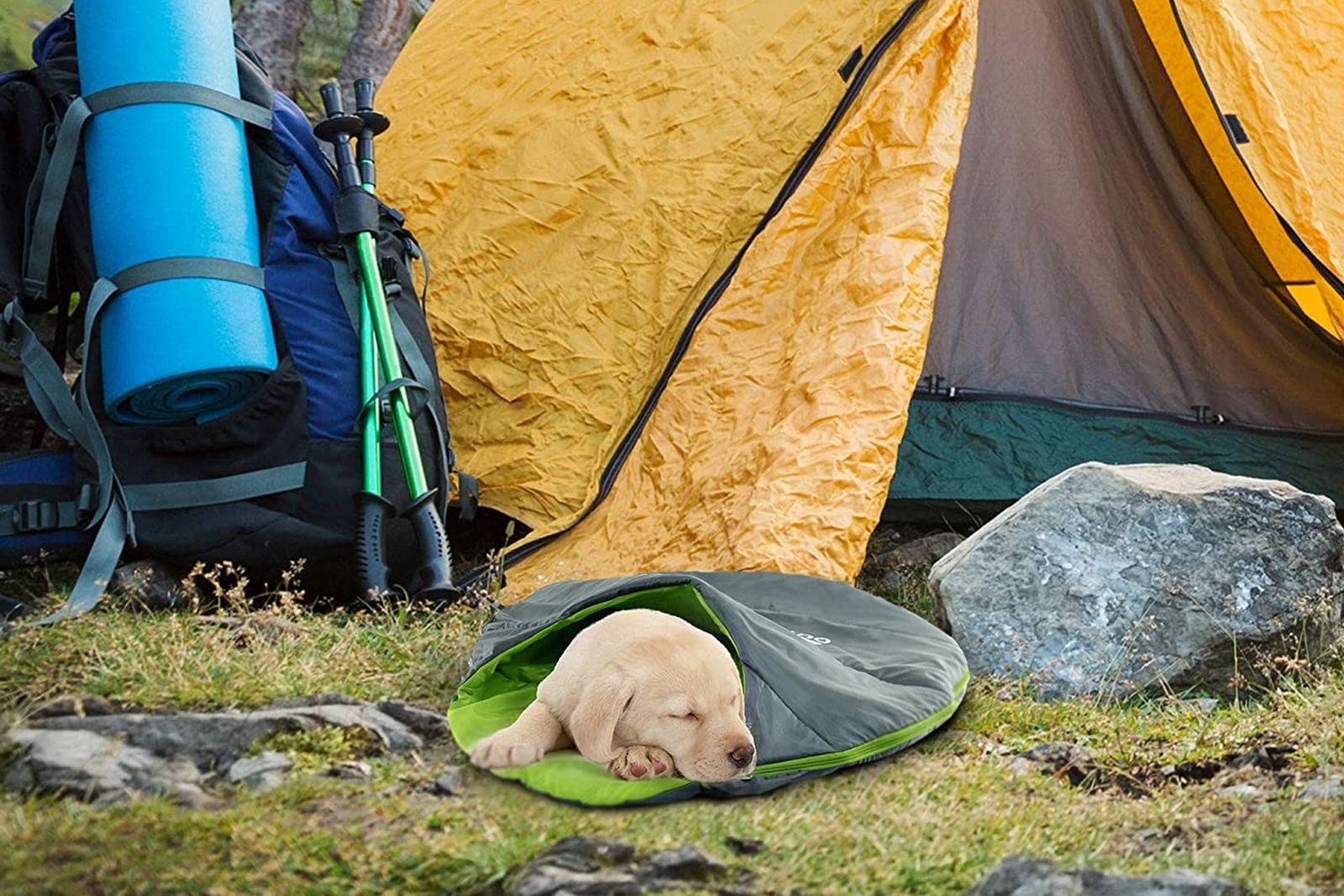 mejores sacos de dormir para perros